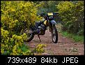Κάντε click στην εικόνα για μεγαλύτερο μέγεθος.  Όνομα:DSC_0130.jpg Προβολές:224 Μέγεθος:84,0 KB ID:358425