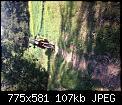 Κάντε click στην εικόνα για μεγαλύτερο μέγεθος.  Όνομα:image-f2dc29cebae3b09fc6c09aa8eec723970367fc767f289c57569c58710a2c80f1-V.jpg Προβολές:468 Μέγεθος:107,1 KB ID:353249