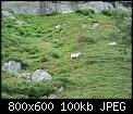 Κάντε click στην εικόνα για μεγαλύτερο μέγεθος.  Όνομα:p1000430_1.jpg Προβολές:2896 Μέγεθος:99,7 KB ID:210572