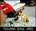 Κάντε click στην εικόνα για μεγαλύτερο μέγεθος.  Όνομα:FB_IMG_1561108477620.jpg Προβολές:327 Μέγεθος:86,6 KB ID:407545