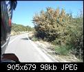 Κάντε click στην εικόνα για μεγαλύτερο μέγεθος.  Όνομα:11-10-20 Ανδρίτσαινα-Αλιφείρα 031 (1024x768).jpg Προβολές:592 Μέγεθος:98,2 KB ID:421637