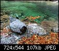 Κάντε click στην εικόνα για μεγαλύτερο μέγεθος.  Όνομα:received_722413071700258.jpg Προβολές:177 Μέγεθος:106,8 KB ID:422318