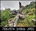 Κάντε click στην εικόνα για μεγαλύτερο μέγεθος.  Όνομα:7.jpg Προβολές:109 Μέγεθος:108,2 KB ID:418847
