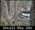 Κάντε click στην εικόνα για μεγαλύτερο μέγεθος.  Όνομα:Τσιβ1.jpg Προβολές:342 Μέγεθος:94,6 KB ID:160449
