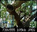 Κάντε click στην εικόνα για μεγαλύτερο μέγεθος.  Όνομα:XsLq0j.jpg Προβολές:138 Μέγεθος:105,4 KB ID:405037