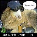 Κάντε click στην εικόνα για μεγαλύτερο μέγεθος.  Όνομα:neiro.jpg Προβολές:611 Μέγεθος:25,1 KB ID:417227