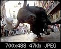 Κάντε click στην εικόνα για μεγαλύτερο μέγεθος.  Όνομα:the last photo i ever took.jpg Προβολές:279 Μέγεθος:46,7 KB ID:442