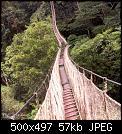 Κάντε click στην εικόνα για μεγαλύτερο μέγεθος.  Όνομα:the last photo i ever took_15.jpg Προβολές:269 Μέγεθος:57,5 KB ID:444