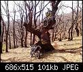 Κάντε click στην εικόνα για μεγαλύτερο μέγεθος.  Όνομα:CCM ELIKONAS.jpg Προβολές:532 Μέγεθος:101,1 KB ID:402019