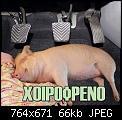 Κάντε click στην εικόνα για μεγαλύτερο μέγεθος.  Όνομα:pork.jpg Προβολές:770 Μέγεθος:65,6 KB ID:398410
