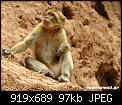 Κάντε click στην εικόνα για μεγαλύτερο μέγεθος.  Όνομα:Morocco3-6.jpg Προβολές:846 Μέγεθος:96,9 KB ID:303021