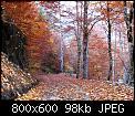 Κάντε click στην εικόνα για μεγαλύτερο μέγεθος.  Όνομα:img_0187a.jpg Προβολές:4007 Μέγεθος:98,1 KB ID:183352