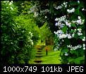 Κάντε click στην εικόνα για μεγαλύτερο μέγεθος.  Όνομα:3SGgsB.jpg Προβολές:596 Μέγεθος:101,4 KB ID:383649