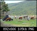 Κάντε click στην εικόνα για μεγαλύτερο μέγεθος.  Όνομα:Στιγμιότυπο οθόνης (105).jpg Προβολές:77 Μέγεθος:105,3 KB ID:421947