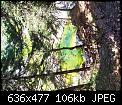 Κάντε click στην εικόνα για μεγαλύτερο μέγεθος.  Όνομα:IMG_20200908_134606_resize_64.jpg Προβολές:139 Μέγεθος:105,5 KB ID:420850