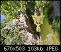 Κάντε click στην εικόνα για μεγαλύτερο μέγεθος.  Όνομα:IMG_20200908_123317_resize_71.jpg Προβολές:141 Μέγεθος:102,7 KB ID:420851