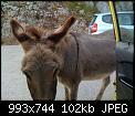 Κάντε click στην εικόνα για μεγαλύτερο μέγεθος.  Όνομα:IMG_1500.jpg Προβολές:200 Μέγεθος:101,8 KB ID:404694