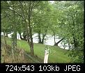 Κάντε click στην εικόνα για μεγαλύτερο μέγεθος.  Όνομα:_1017130.jpg Προβολές:256 Μέγεθος:102,9 KB ID:408887