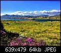 Κάντε click στην εικόνα για μεγαλύτερο μέγεθος.  Όνομα:FullSizeRender.jpg Προβολές:971 Μέγεθος:63,9 KB ID:365569