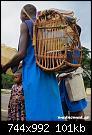 Κάντε click στην εικόνα για μεγαλύτερο μέγεθος.  Όνομα:Cameroon06.jpg Προβολές:292 Μέγεθος:101,1 KB ID:318904