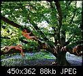 Κάντε click στην εικόνα για μεγαλύτερο μέγεθος.  Όνομα:dentro2.jpg Προβολές:67 Μέγεθος:87,7 KB ID:50357