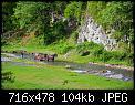 Κάντε click στην εικόνα για μεγαλύτερο μέγεθος.  Όνομα:DSC_1046-1.jpg Προβολές:138 Μέγεθος:103,6 KB ID:408422