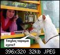 Κάντε click στην εικόνα για μεγαλύτερο μέγεθος.  Όνομα:tsixles.jpg Προβολές:6984 Μέγεθος:32,5 KB ID:380887