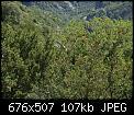 Κάντε click στην εικόνα για μεγαλύτερο μέγεθος.  Όνομα:_1017431.jpg Προβολές:68 Μέγεθος:106,5 KB ID:409757