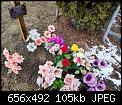 Κάντε click στην εικόνα για μεγαλύτερο μέγεθος.  Όνομα:6.jpg Προβολές:399 Μέγεθος:104,7 KB ID:406419