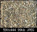 Κάντε click στην εικόνα για μεγαλύτερο μέγεθος.  Όνομα:100_0699 [640x480].jpg Προβολές:114 Μέγεθος:98,9 KB ID:98944