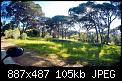 Κάντε click στην εικόνα για μεγαλύτερο μέγεθος.  Όνομα:Στροφυλιά.jpg Προβολές:108 Μέγεθος:104,9 KB ID:427757