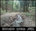 Κάντε click στην εικόνα για μεγαλύτερο μέγεθος.  Όνομα:copy of dsc00322-800x600.jpg Προβολές:13480 Μέγεθος:99,9 KB ID:182721