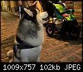 Κάντε click στην εικόνα για μεγαλύτερο μέγεθος.  Όνομα:7EvKrK.jpg Προβολές:238 Μέγεθος:101,8 KB ID:391035