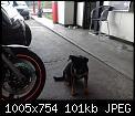 Κάντε click στην εικόνα για μεγαλύτερο μέγεθος.  Όνομα:NLKSV8.jpg Προβολές:561 Μέγεθος:101,4 KB ID:390852